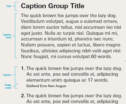 A representation of caption label